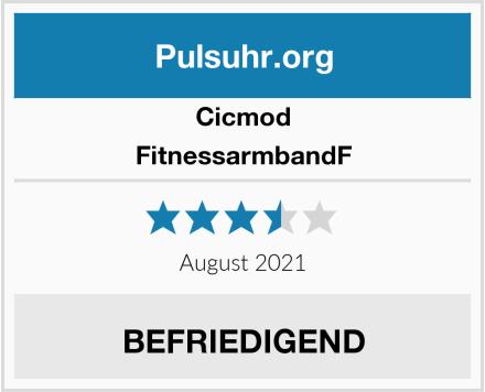 Cicmod FitnessarmbandF Test